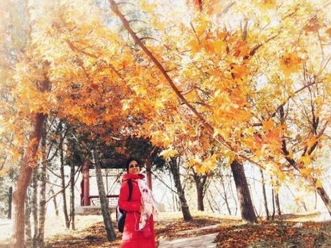 圆明园~最后的红叶