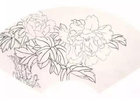 工笔扇面牡丹画法——朱红牡丹