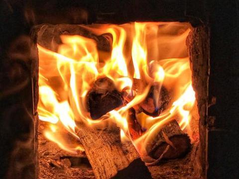 与紫檀同等价值的树木,木质密集有香味,却经常被农民当柴烧