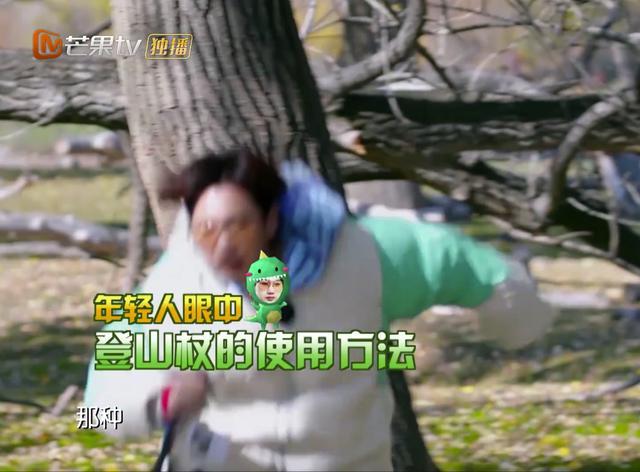 汪涵儿子小沐沐蹲地死守《野生厨房》:我看看爸爸还有没有吃土