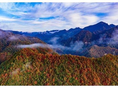 秦岭深处的两条绝美赏秋自驾路线,承包了最撩人的秋色