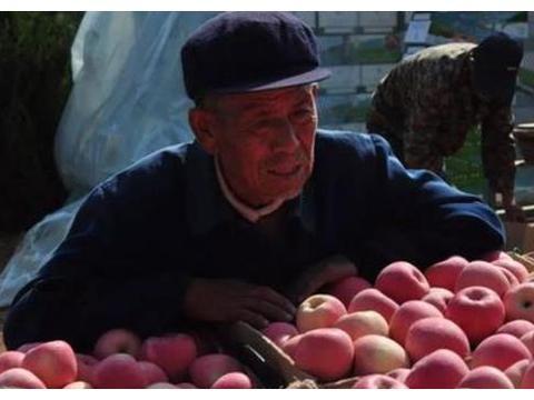 1村农民50万斤水果3毛1斤等不到人上门收,果农眼里泪直打转