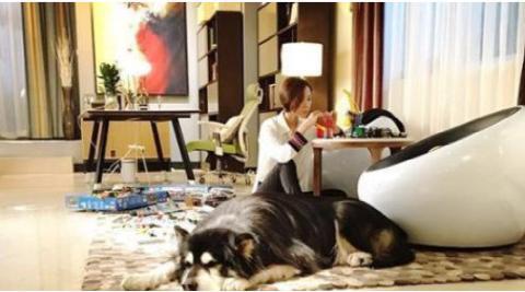晒晒王珞丹的豪宅:客厅铺着高级毛地毯,在家就喜欢坐地上玩拼图