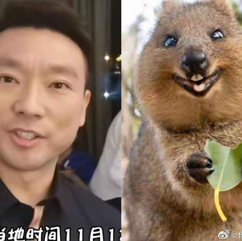 哈哈哈朱广权微博转了张图,康辉回应:值一个礼拜手语班!