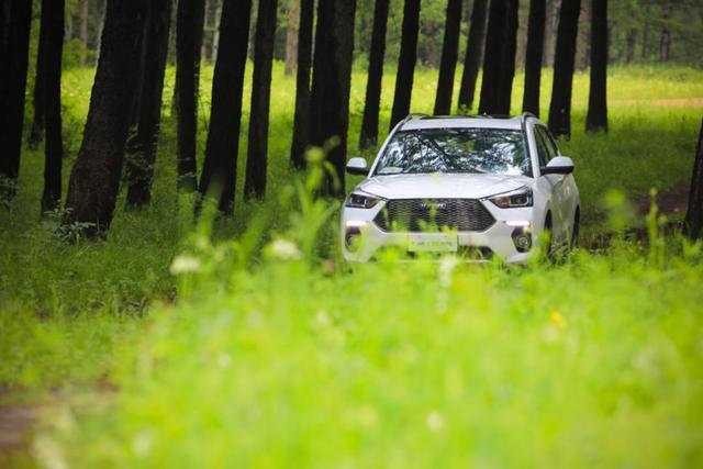 用一款车型打造一个市场 新哈弗H6 Coupe智联版做到了