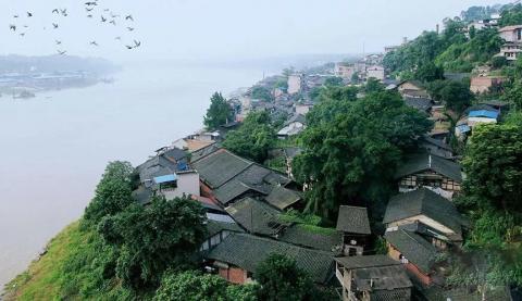 这个江津古镇的故事,带着从历史长河飘散而来的酒香?