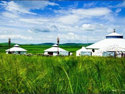 旅游睡在蒙古包里,为什么主人要在地上放一根红线?原因不简单