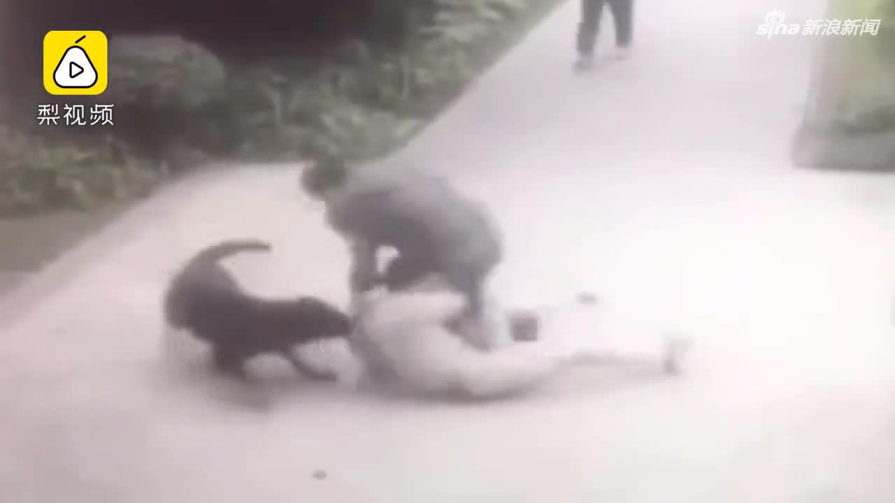 男子遭小区猛犬扑咬1分钟 监控拍下事发画面