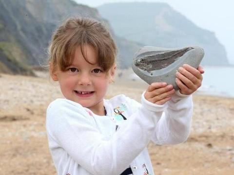 英国女孩儿海边玩耍,捡到一块特殊石头,竟是1.9亿年前的化石