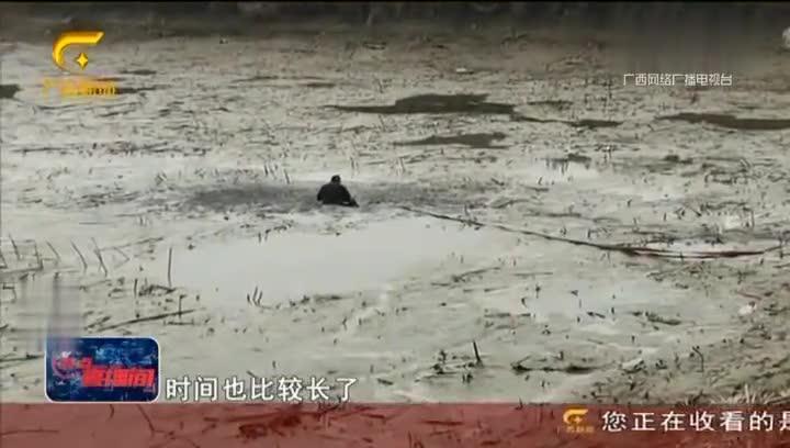 浙江金华:七旬老人深陷藕塘 消防员扒泥巴救人