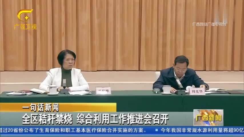 广西壮族自治区全区秸秆禁烧,综合利用工作推进会召开