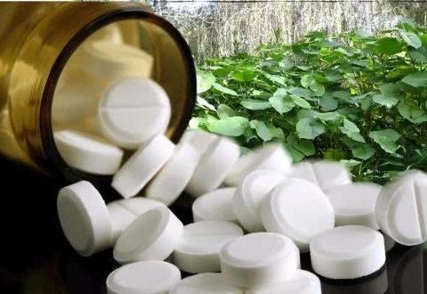 阿司匹林用来养花,可以让植物长得更加健康,还能预防病菌