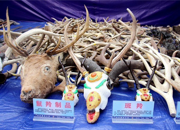 美人谷丹巴:让绿水青山与古碉藏寨交相辉映