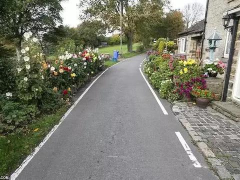老夫妻给村庄小路两旁种满花草,精心照料30年如今面临拆除