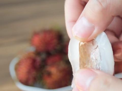 红毛丹果肉上的一层膜,其实是不能吃的,很多人都不知道是为什么