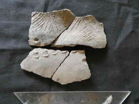 考古学家在厄瓜多尔发现与未知文化有关的陶器