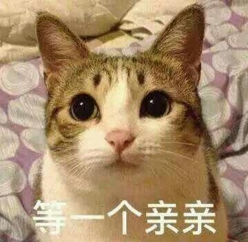 段子:小明:有的人年初就要辞职,结果现在还在上班,迟到都不敢
