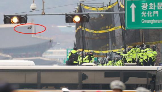 反美活动愈演愈烈,民众怒撕星条旗,韩国警察出动逮捕一名示威者