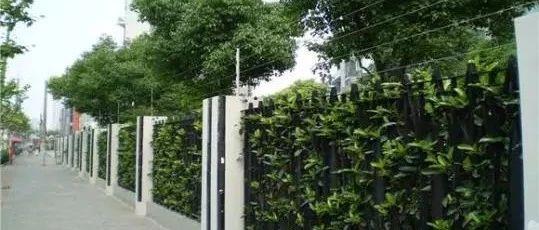 赣州中心城区建筑规划设计中不应设置围墙围栏或绿篱