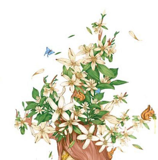 心理测试:母亲节你会给妈妈送什么花,测试你的心思有多单纯?