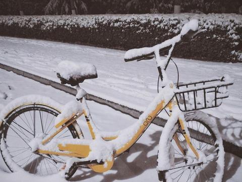 共享单车的淡季,ofo裁员又降免押充值金额,能否度过这个寒冬?