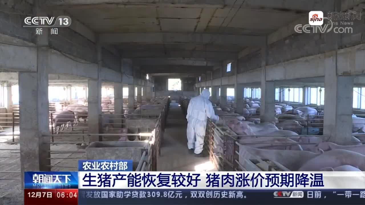 """农业农村部:全国""""猪价""""连续4周回落"""