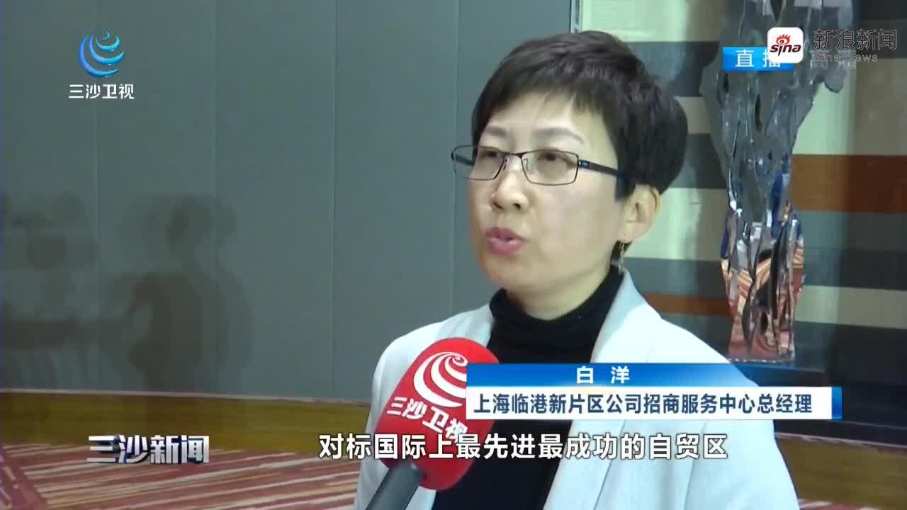上海临港新片区城市空间资源推介会举行