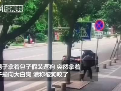 """四川一男子专挑宠物狗""""碰瓷"""" 警方正调查"""