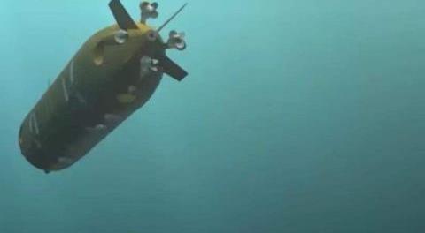 核动力鱼雷了解一下:核潜艇一样大小,还能掀起海啸