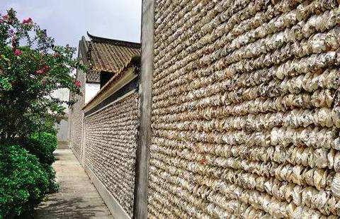 """名副其实的""""蚝宅"""":中国一房屋用生蚝建成,至今600年仍很坚固"""