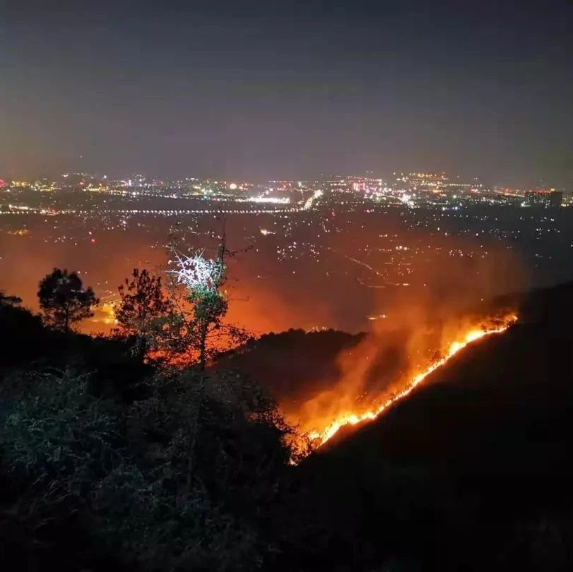 桂林尧山发生森林大火,系人为!嫌疑人供认:烧黄蜂失火后逃跑