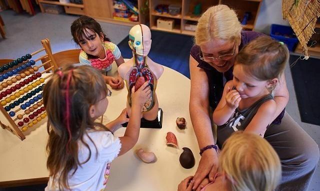 孩子性格天生有差别,幼儿园大班这个差别,却体现了教育的不同