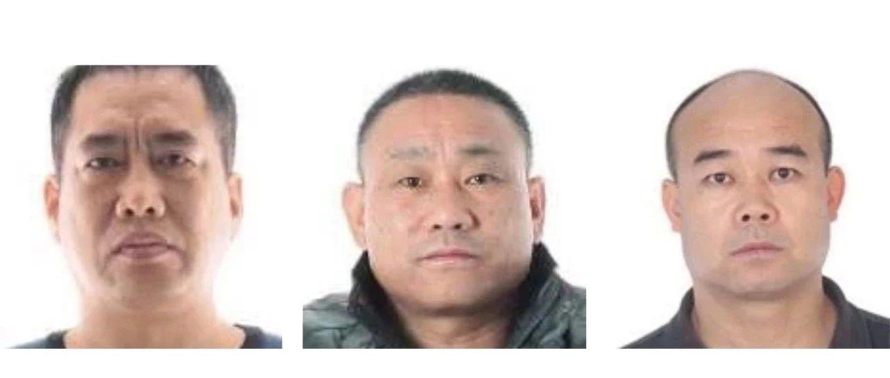 通告丨宁夏这3人已被采取刑事强制措施,警方正在征集线索!