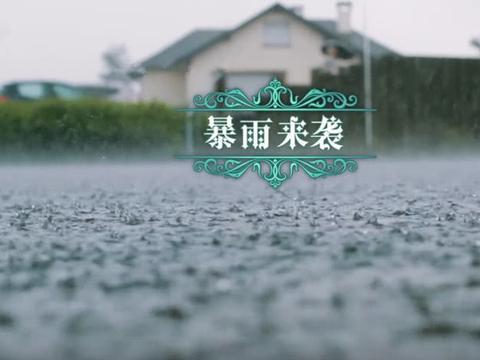 """节目录制期间突降暴雨,导演组:""""什么也不要管了,撤"""""""
