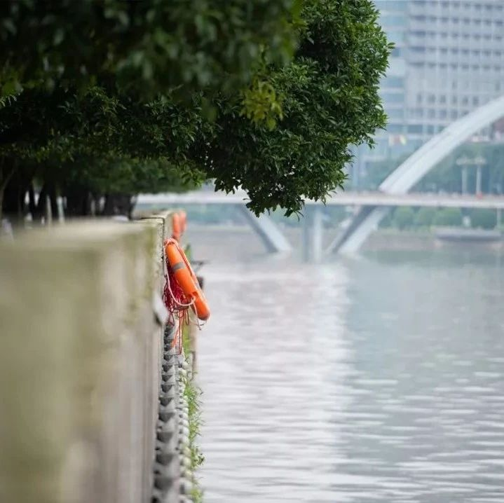 救人!救人!清晨,浏阳河里漂着一个人,他立即冲上去!