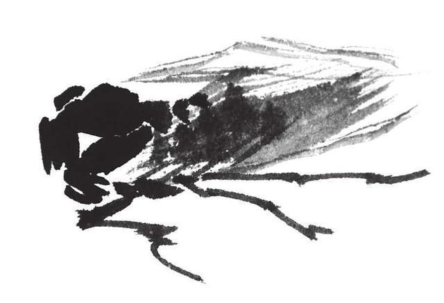 零国画教程情趣:分基础教你画纺织娘,蝉,蝗虫易学,简单月色画法步骤图片