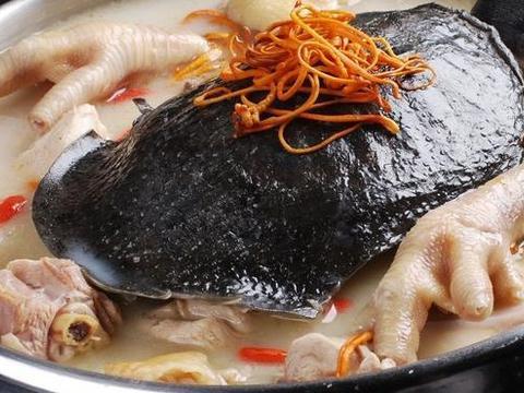 """饭桌上的甲鱼益脑补身?""""美食五味肉""""孩子却不爱吃,美味营养高"""