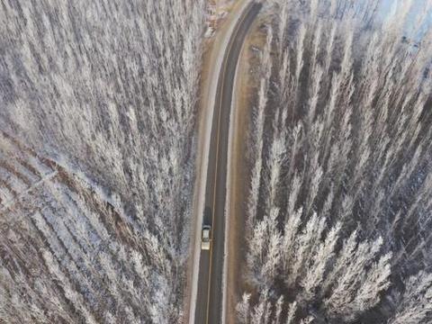 新疆博州:博尔塔拉河谷出现雾淞景观