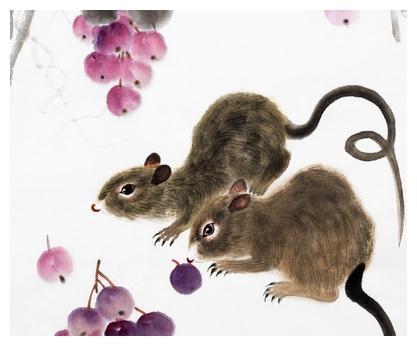 属鼠的人在这三个吉时出生,贵人众多,必定事业有成,富贵终生!
