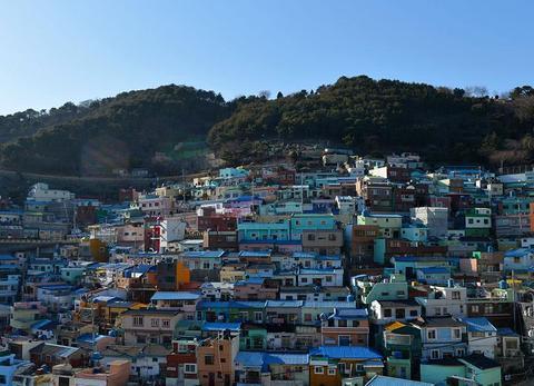 韩国景区再现中文标语,句句刺痛中国游客心,游客纷纷表示不去了