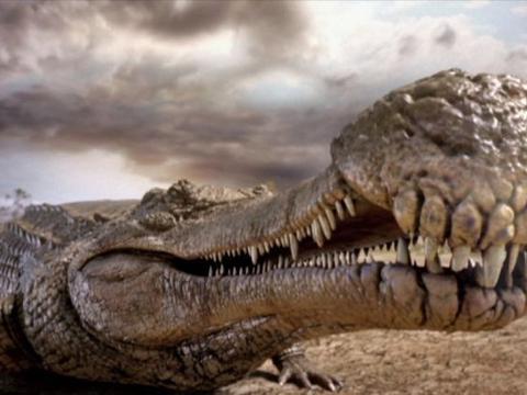 """以恐龙为食?中生代第一大巨鳄,可能只是一个""""渔夫""""!"""