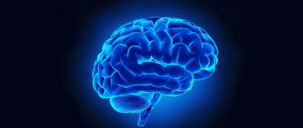 The Lancet Neurology: 南京大学附属金陵医院在脑卒中治疗方面取得重要突破!