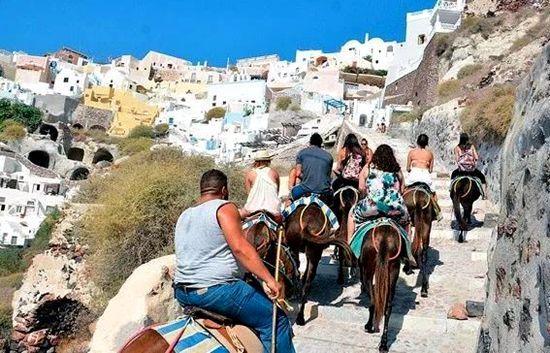希腊农业部长:将严格限制牲畜作为旅游代步工具