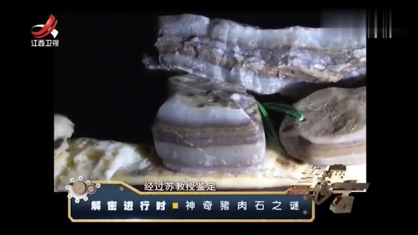 猪肉石7:男子捡到罕见的猪肉石,请专家鉴定,结果:珍贵玛瑙!