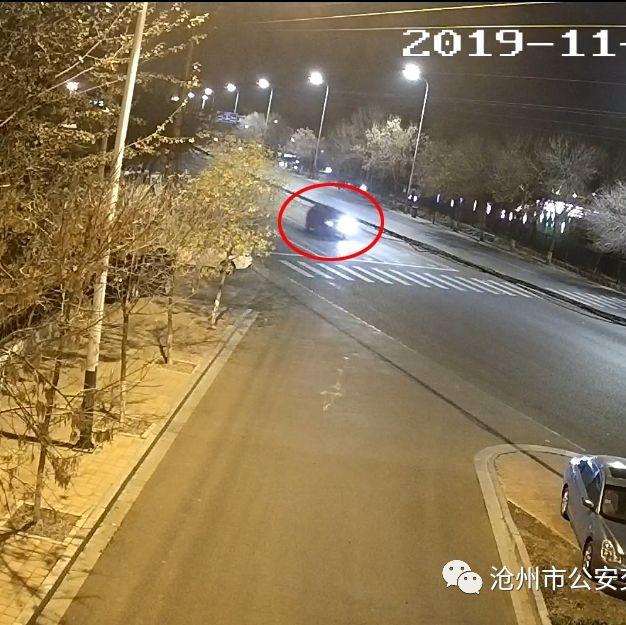 深夜,沧州市区有车撞人逃逸,伤者已不幸身亡!交警火速追凶......