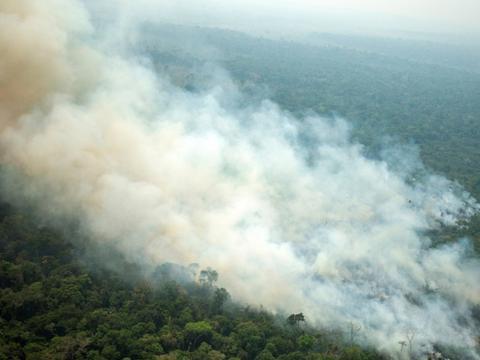 亚马逊雨林火灾烧了近20天,担心:会不会把地球氧气烧光?