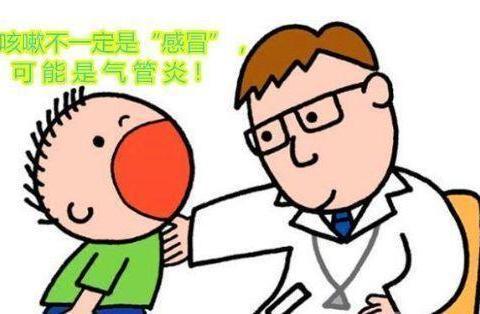 支气管炎, 咳嗽痰多, 煮碗汤, 润肺止咳! 速除根