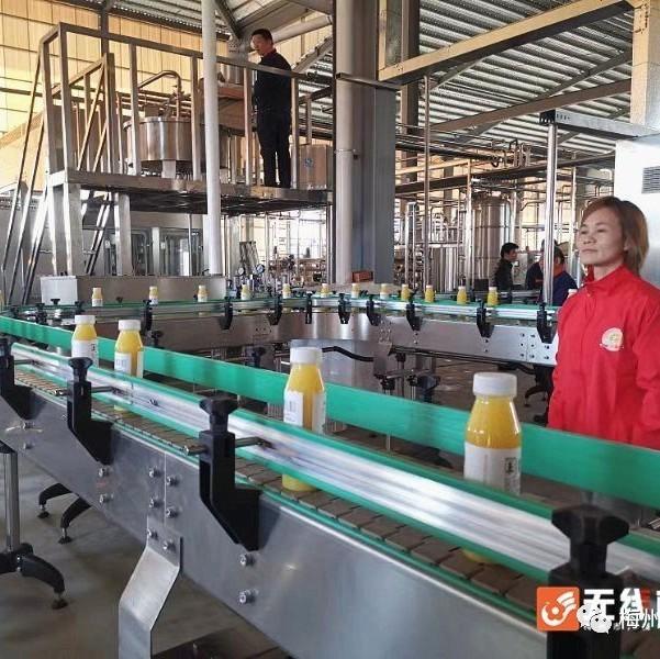 产业   飞龙果业鲜榨橙汁灌装生产线启动,发力农业精深加工