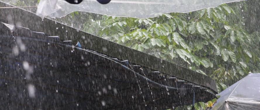 最低3℃!大风+降雨!江西天气马上大反转…