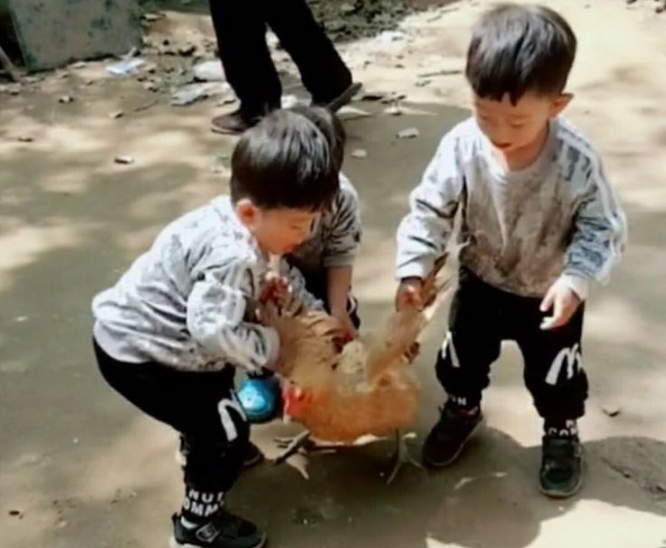 三胞胎去农村姥爷家,刚进家门姥爷就犯愁了,真是3个熊孩子!